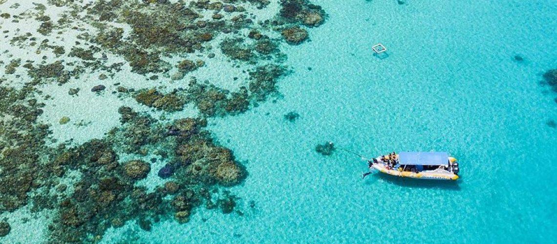 Cape Tribulation Mackay Reef